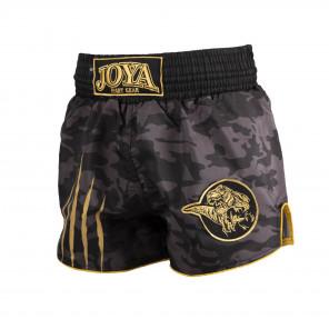 JOYA DINO MUAY THAI SHORTS - GOLD