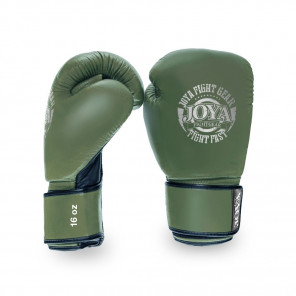 Joya Thailand Kickboxing Glove - Fight Fast - Leather - Green Silver